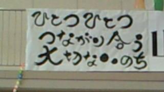 201010031228001.jpg