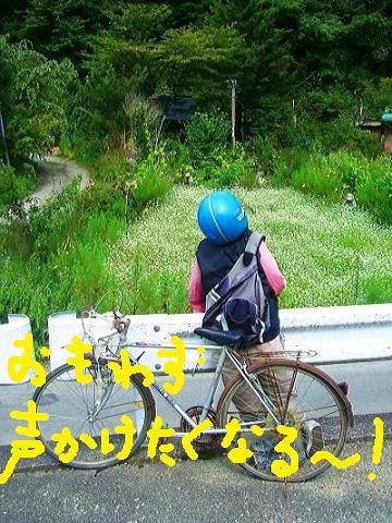 かかし自転車