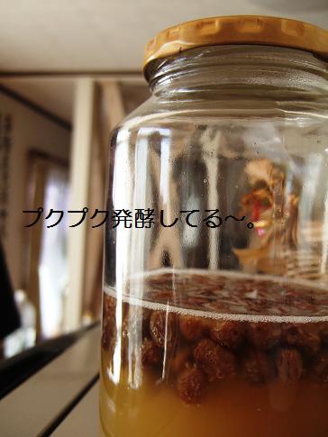 自家製天然酵母