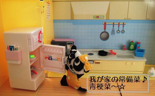 青梗菜冷蔵庫