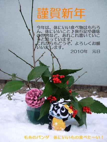 2010謹賀新年ブログトップ用