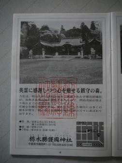 P1030272.jpg