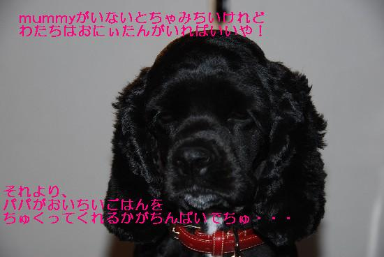 200906 177b