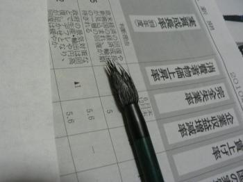 ボサボサの筆