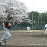 桜の下で安打を放つ村上