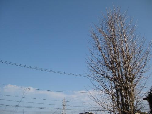 IMG_0001_55.jpg