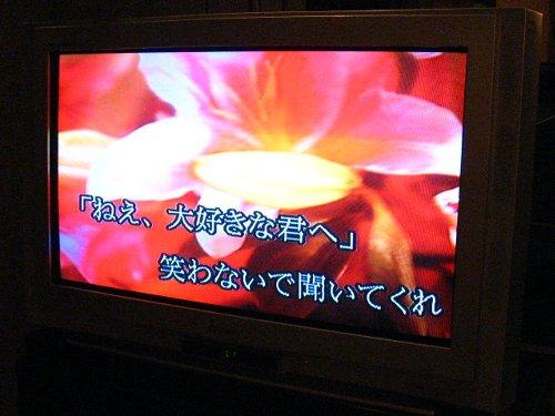 IMAGE22dec2008006.jpg