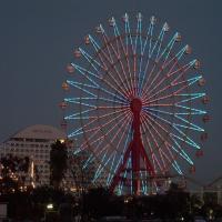2009-1-11-神戸15