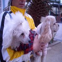 2009-1-11-神戸7