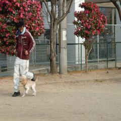 2009-1-5-訓練2