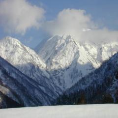 2009-1-9-風景1