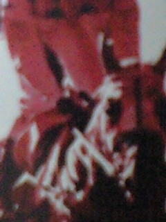 20090109181309.jpg