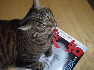 けんちゃんが月刊誌を1