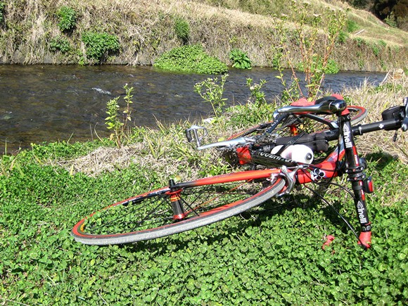 田舎道をサイクリング