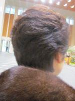 IMG_3983_20120115094936.jpg
