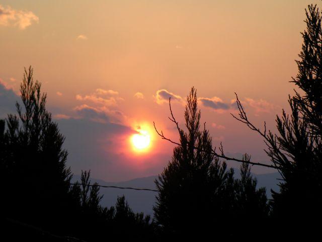 SANY0062_20120125220424.jpg