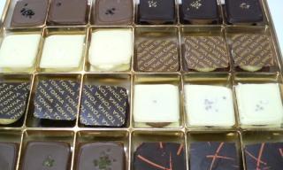 Chocolate Delicate Squares