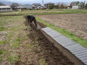2010-4-13たんぼ