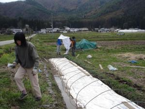2010-4-19たんぼ