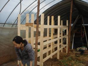 2010-6-26乾燥棚3