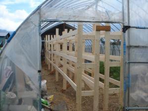 2010-6-28乾燥棚