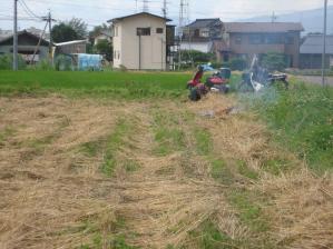 2010-7-7小麦