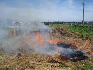 2010-7-19麦畑の後処理