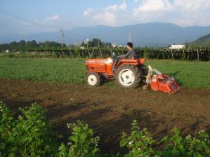 2010-8-23除草作業