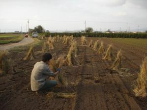 2010-10-7そば4
