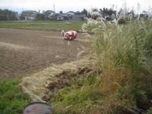 2010-10-18田んぼ8