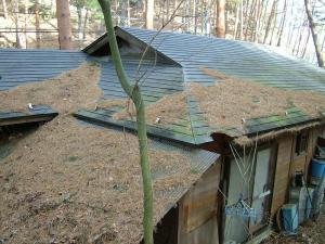 2010-12-21屋根掃除