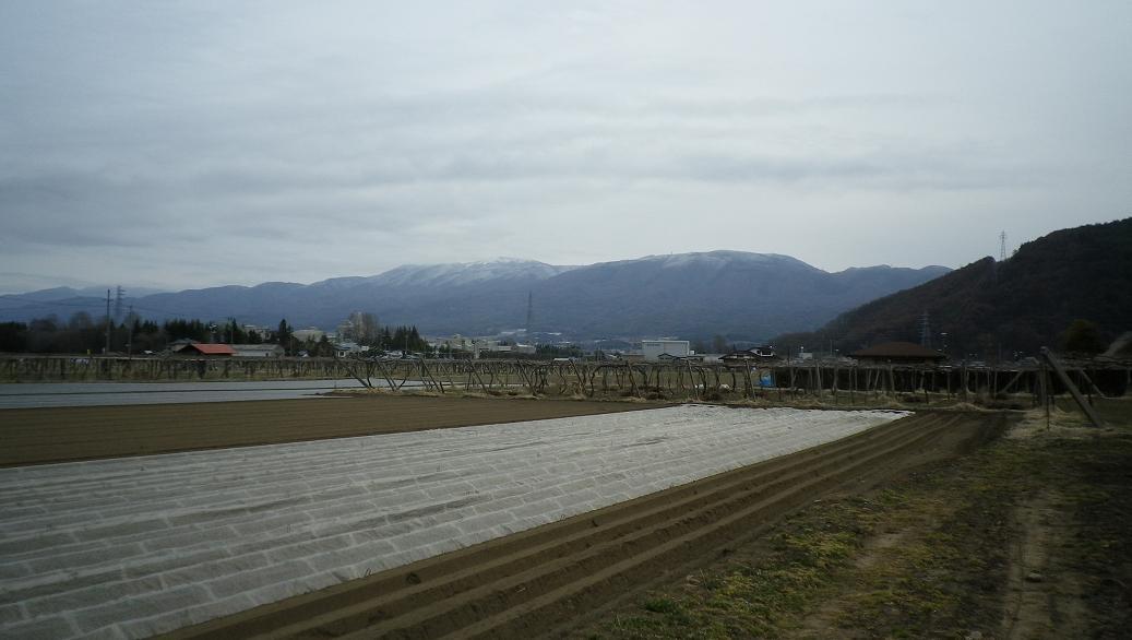 2011-4-3東山