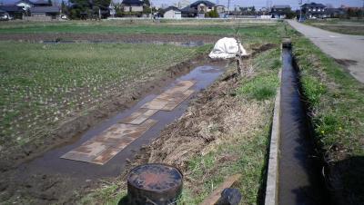2011-4-24田んぼ