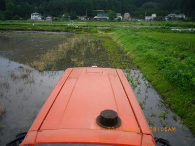 2011-6-12田んぼ代かき;jpg (3)