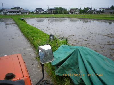 2011-6-12田んぼ代かき;jpg (5)