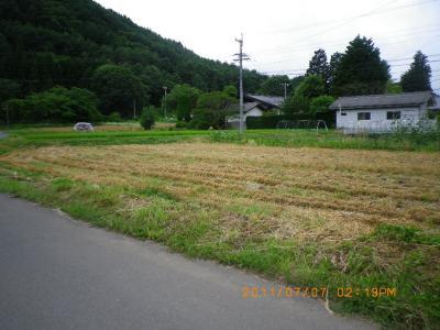 2011-7-7麦刈り