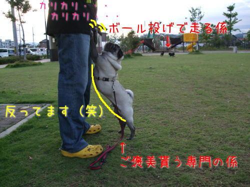 2009_06210019.jpg