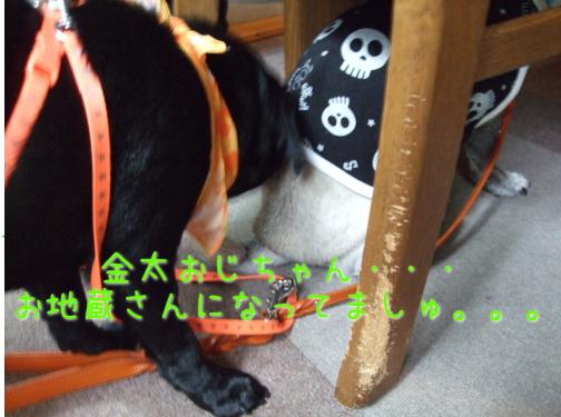 2009_07060030.jpg