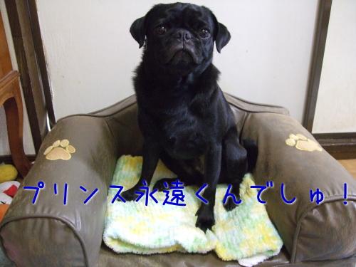 2009_07180003.jpg