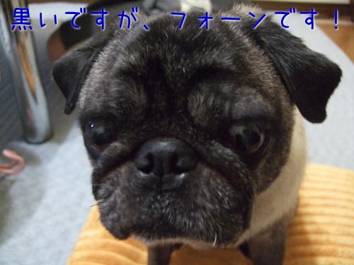 2009_07180112.jpg