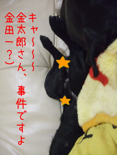 2009_10100025.jpg