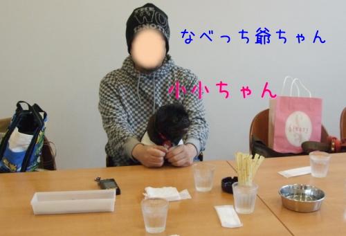 2009_11290031.jpg