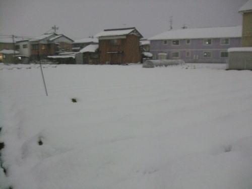 2010_01010053.jpg