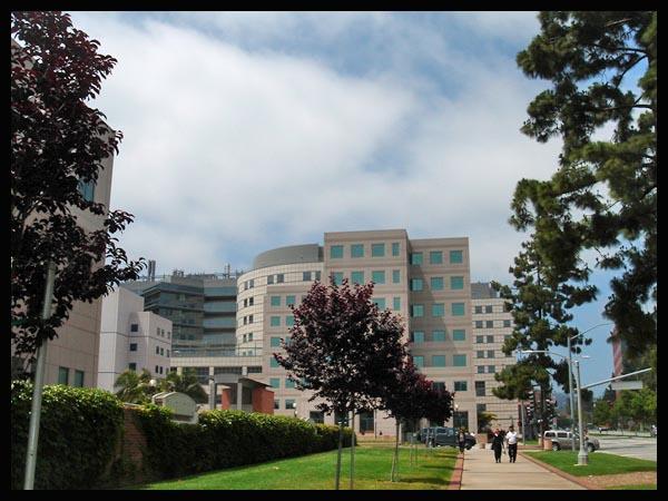 0hospital6810.jpg