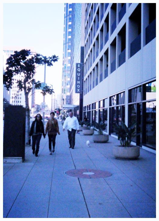 walk41.jpg