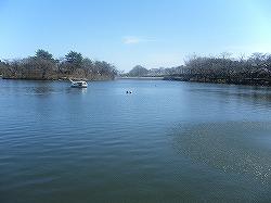りんどう湖1