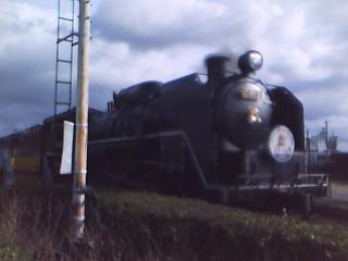 SA290113.jpg