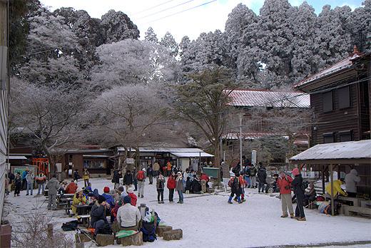 20090124-7.jpg