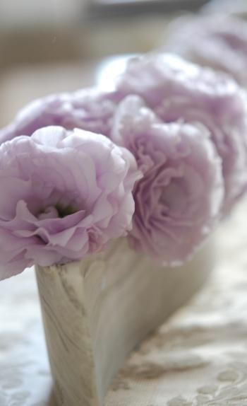20100613tableflower