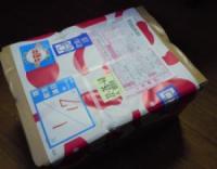 sashiire20110117